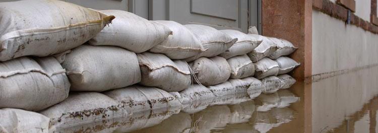 water damage claim advisor